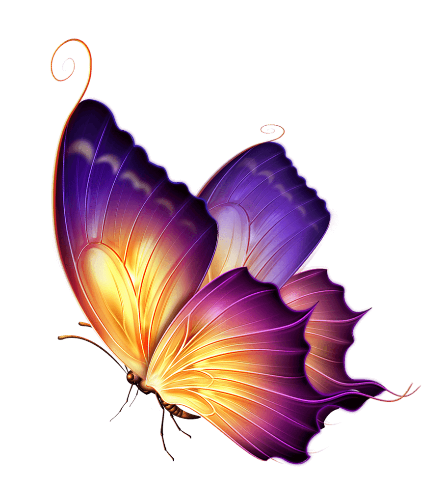 60497-butterfly-color-purple-png-download-free